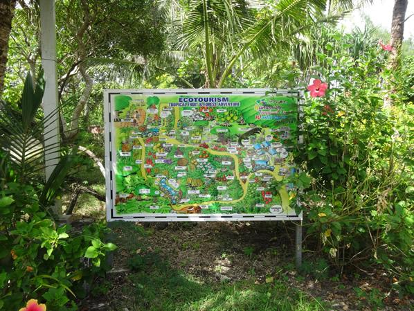 フルーツワールドの地図