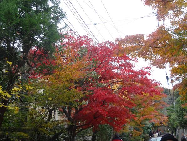 海蔵寺への参道