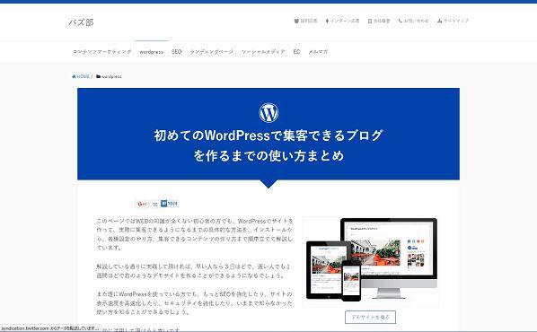 初めてのWordPressで集客できるブログを作るまでの使い方まとめ