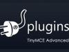 【TinyMCE Advanced】WordPressプラグイン設定方法